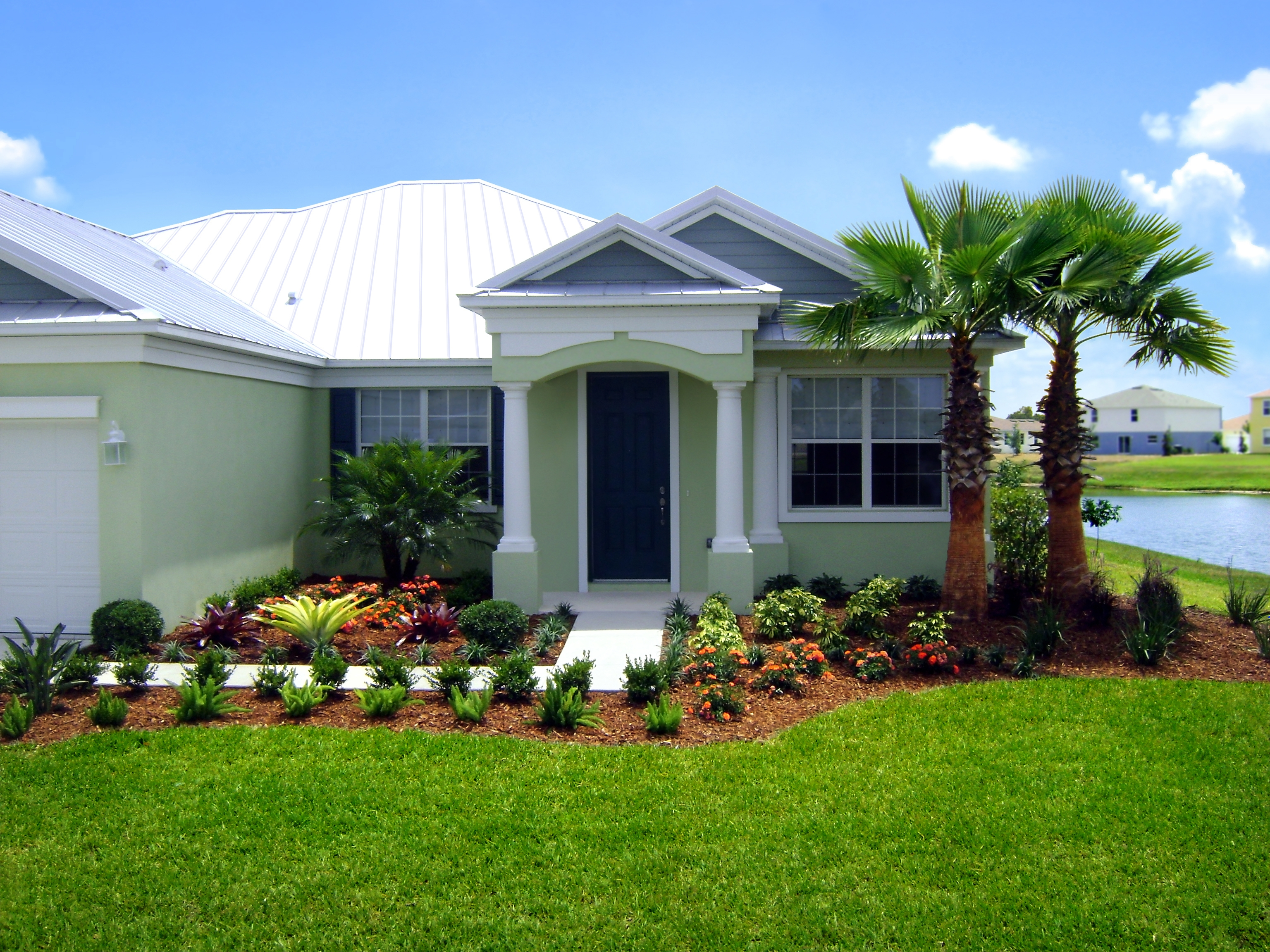Buy washingtonian palm trees in miami ft lauderdale kendall Olive garden citrus heights ca