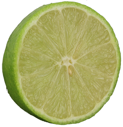 Buy Persian Lime Trees For Sale In Miami Ft Lauderdale